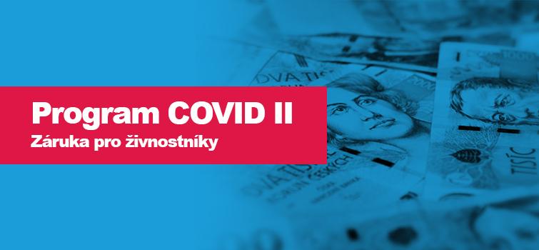 PROGRAM COVID II